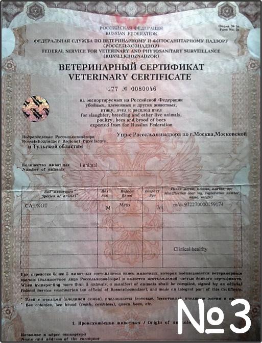 Ветеринарный сертификат - разрешение на перевозку.